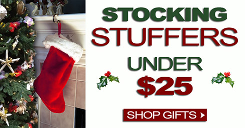 Stocking Stuffers Under $250|13