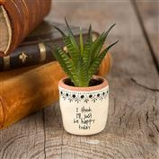 Natural Life Happy Today Succulent Keepsake